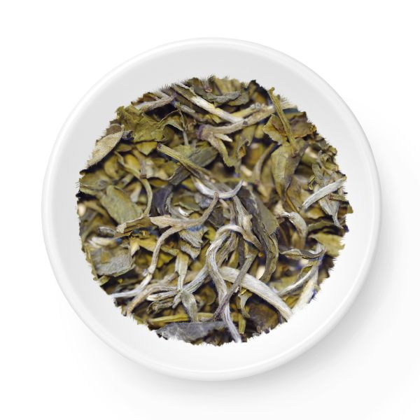 White Tea Snow Buds